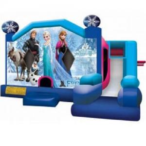 Jumping Castle Hire -  Frozen Slide  Day Hire
