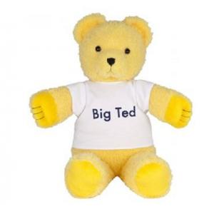 Jasnor - Play School Big Ted Plush Toy 28cm